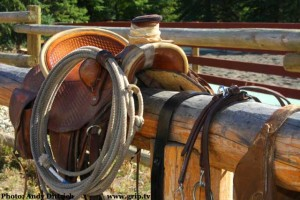 horse saddle on top of fence
