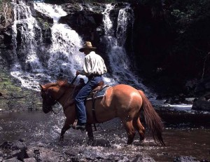 Home New - British Columbia Guest Ranchers Association
