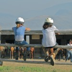 kids on fence at Sundance Guest Ranch