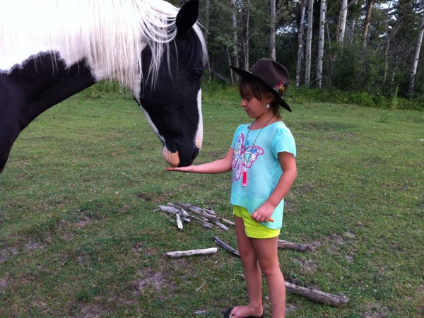 little girl and Big horse