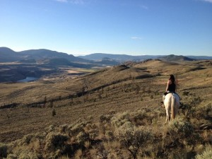 Special summer horse riding