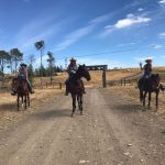 wranglers guest ranch