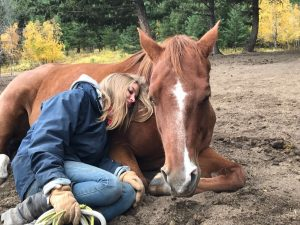 natural relaxing around horses