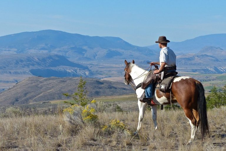 rancher on horseback overlooking mountain range